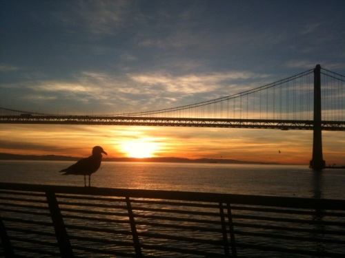 San Francisco sunrise run : JAMcArthur.com